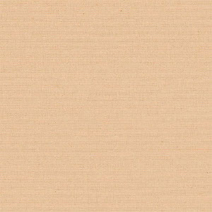 Loneta Basic 106 Beige